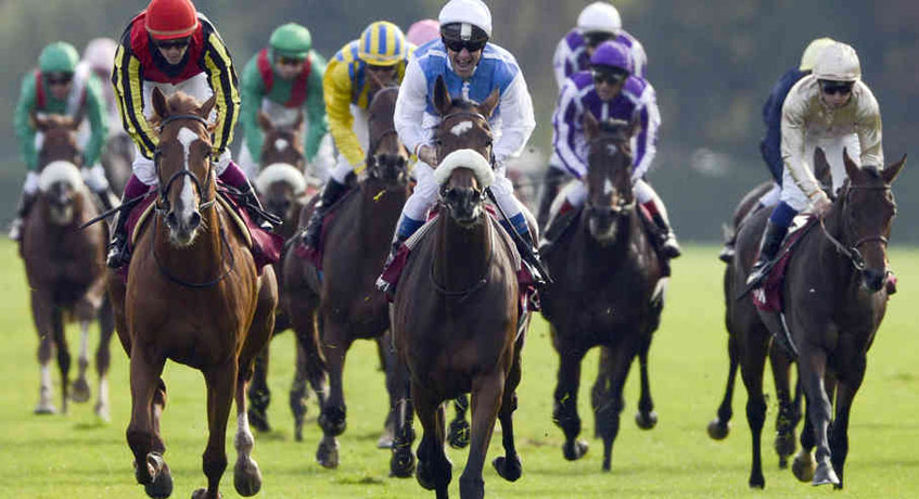 Pari-mutuel Betting on International Racing