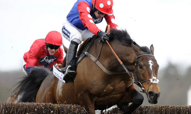 2016 Grand National In-Running